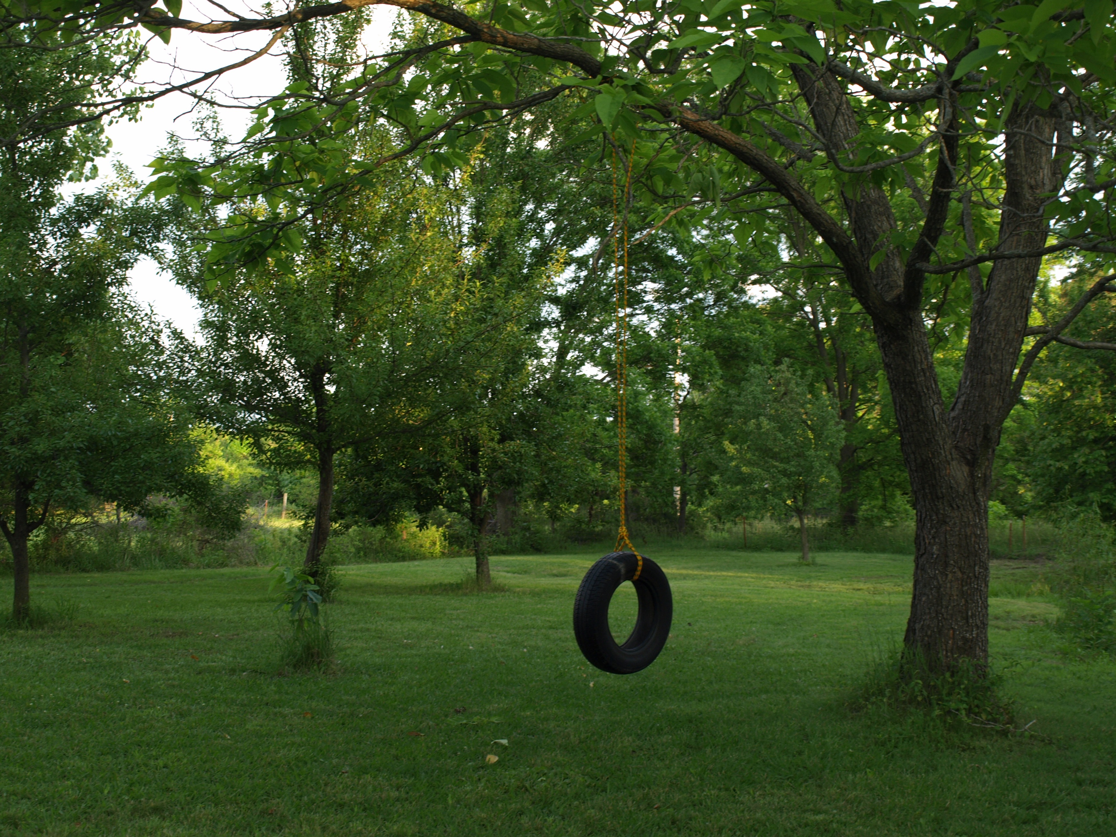Merveilleux Farm Photou0027s Page » Old Fashioned Tire Swing